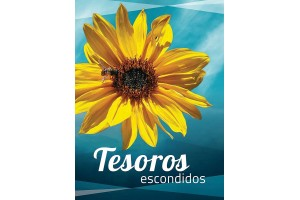 "Calendario ""Tesoros Escondidos"" 2020"